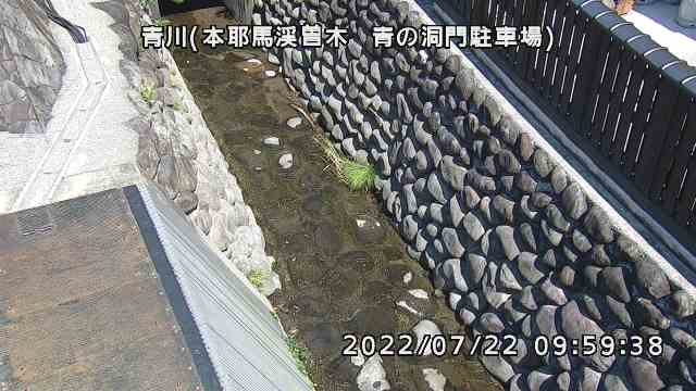 青川(本耶馬渓曽木 青の洞門駐車場)